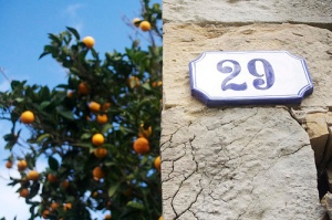 A doorway and an orange tree. There's a 29 on the doorway.